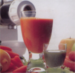 Omega 8004 Vegetable and Fruit Juicer